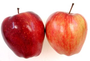 Apples, Comparing apples to apples