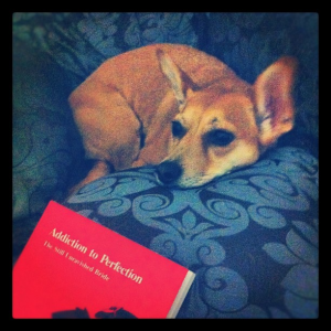 Addiction to Perfection by Marion Woodward and Resting Dog
