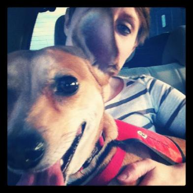 In the car with my dog on the way to the airport