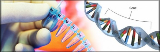 the-mthfr-gene-what-it-means-to-you-94443_573x187